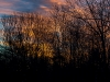 Sunrise, New Years Eve