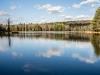 Birch Pond #1