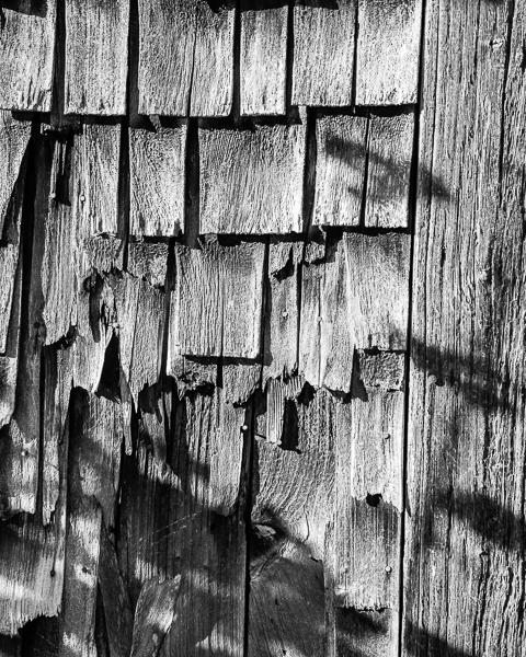 Barn Board #7