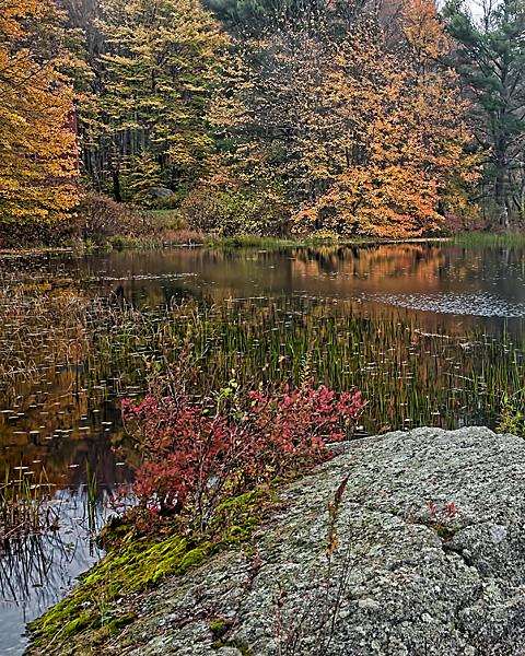 Pond in Harrisville