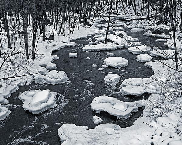 North Branch River #1