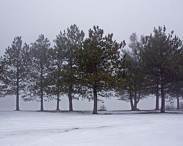 Gregg Lake Fog #4