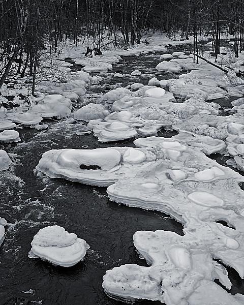 North Branch River #2