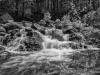 Zealand Lower Falls