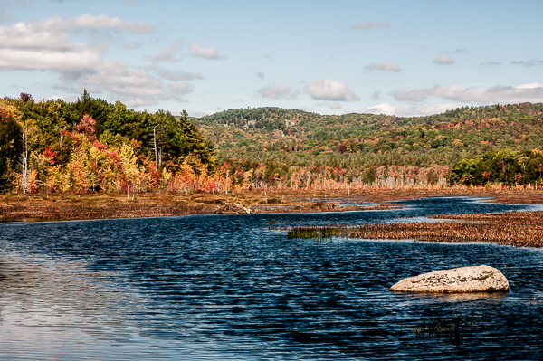 Farrar Marsh  (Hillsborough, NH)