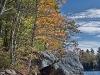 Lakeside Foliage #1