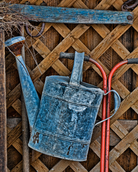 Garden Shed Still Life