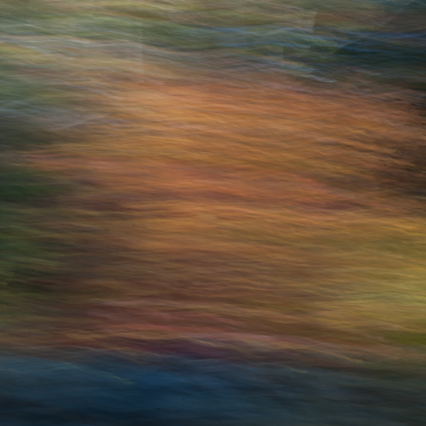 Autumnal Abstract 2015 #8