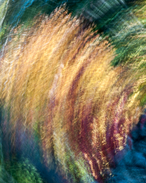 Autumnal Abstract 2015 #9