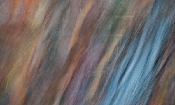 Autumnal Abstract 2015 #13
