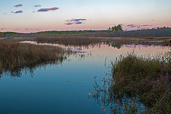 Mud Pond #2 (Peterson WMA)