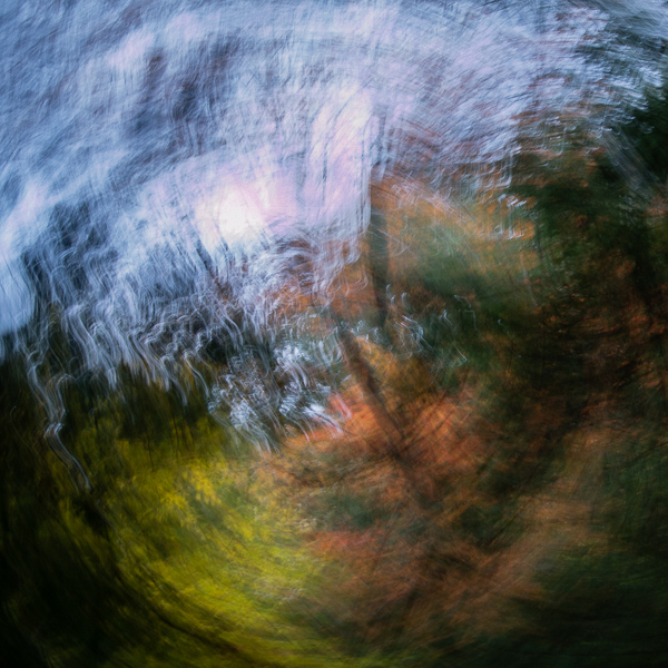 Autumnal Abstract #10