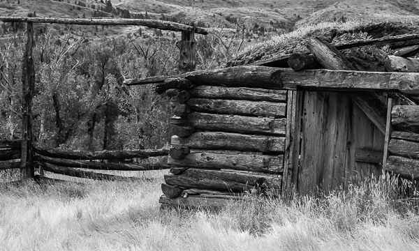Old Cabin and Gate