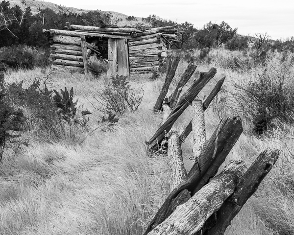 Old Cabin and Fence