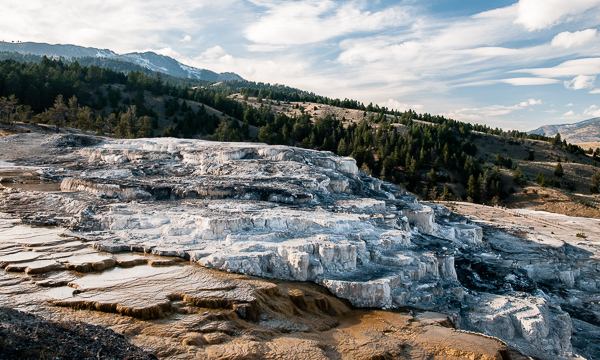 Mammoth Hot Springs #1