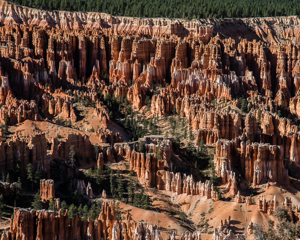Bryce Canyon 14