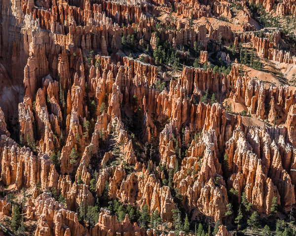 Bryce Canyon 15