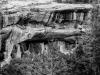 Mesa Verde 15