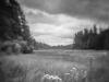 Schoodic Peninsula, ME (with camera obscura)