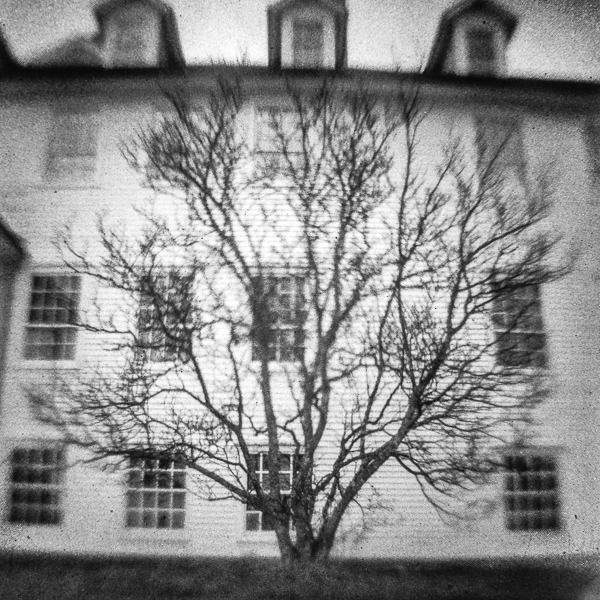 Canterbury Shaker Village Dwelling House and Tree