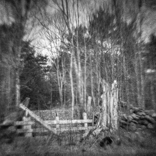 Old Field Gate