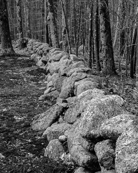 Suzy's Stone Wall