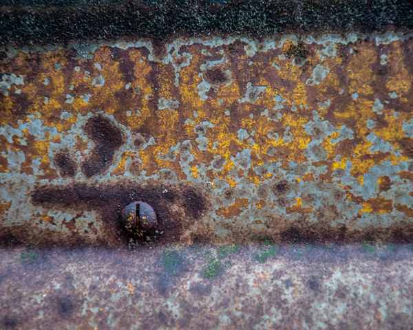 Study in Yellow and Rust #3