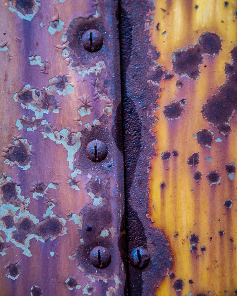 Study in Yellow and Rust #4