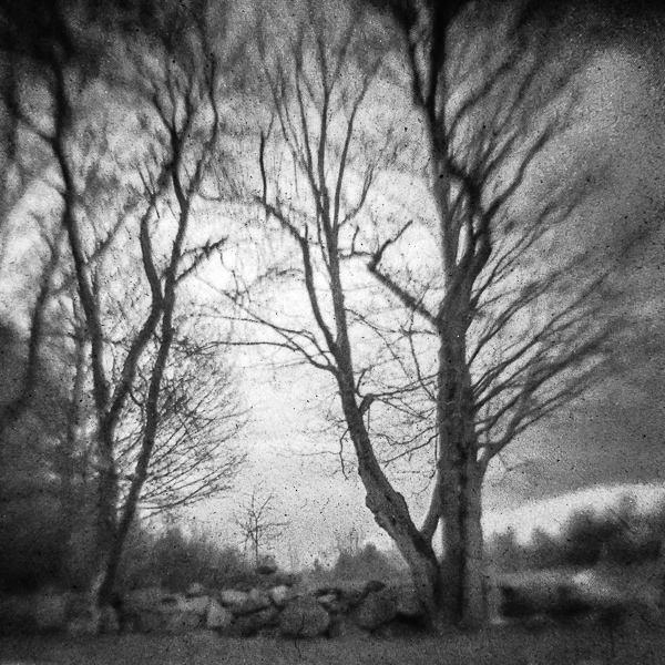 Untitled (East Andover, NH)