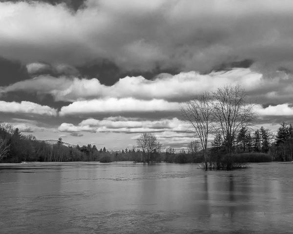 Riverine Field in Flood