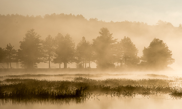 Foggy Sunrise, Gregg Lake