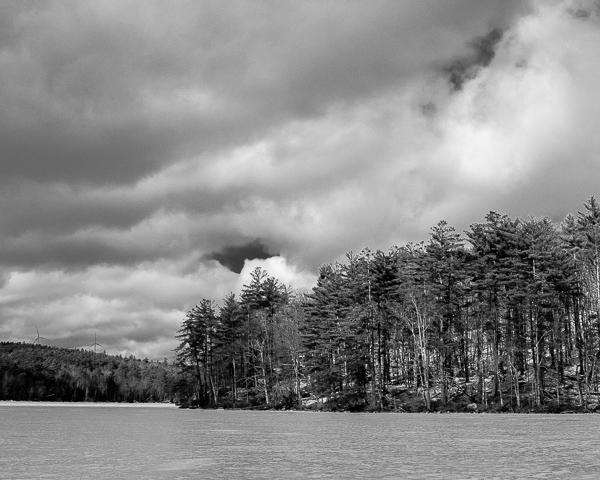 Lakeshore Landscape #3