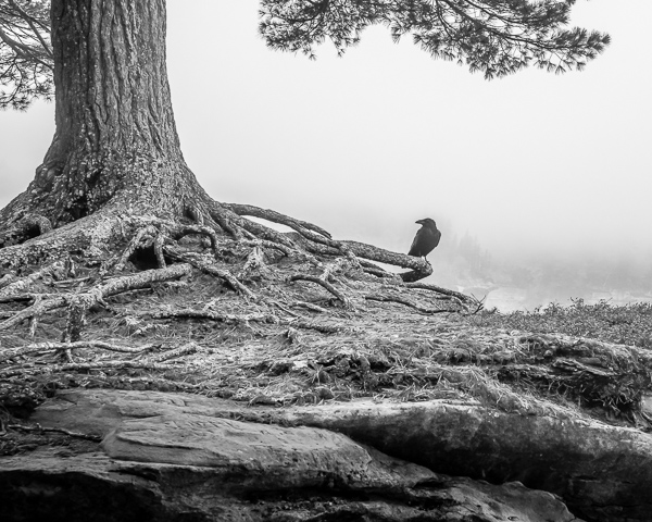 Lakeshore #1 (Raven/Chapel Rock)