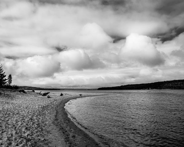 Lakeshore #9