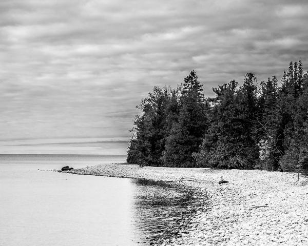 Lakeshore #13