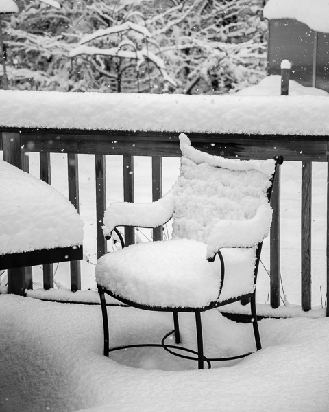 Our deck, yesterday
