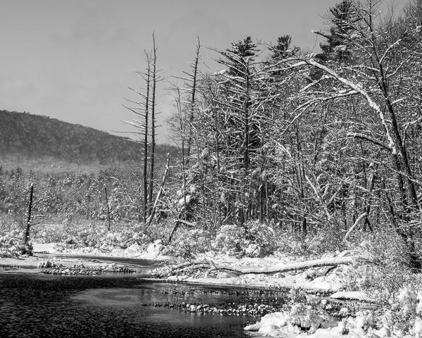 Hattie Brown Brook, Winter