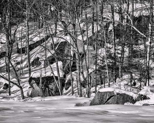 Winter Lakeshore