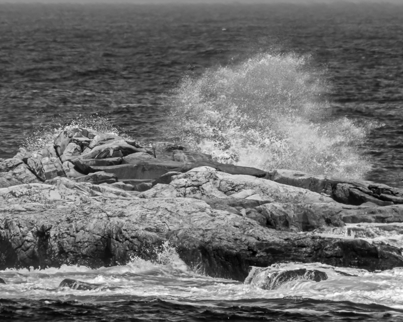 Star Island Surf #1