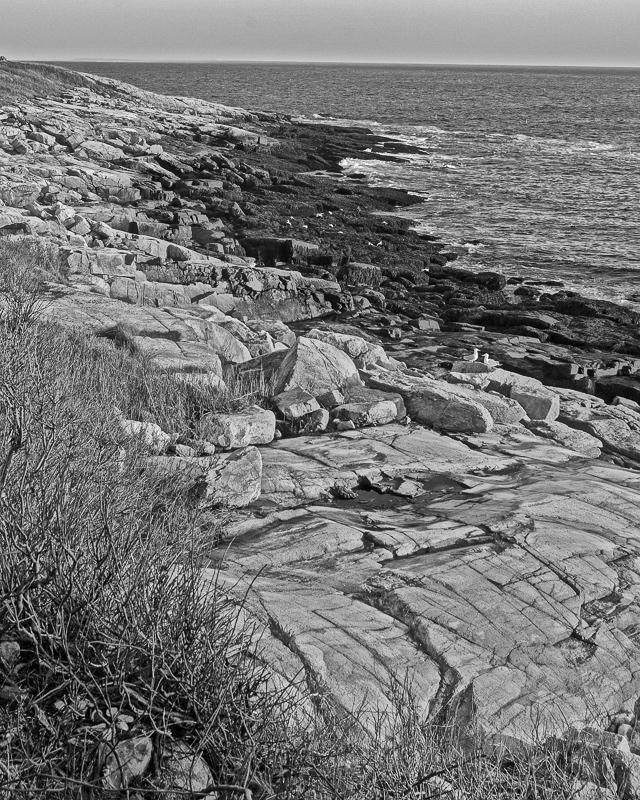 Shoreline, Star Island