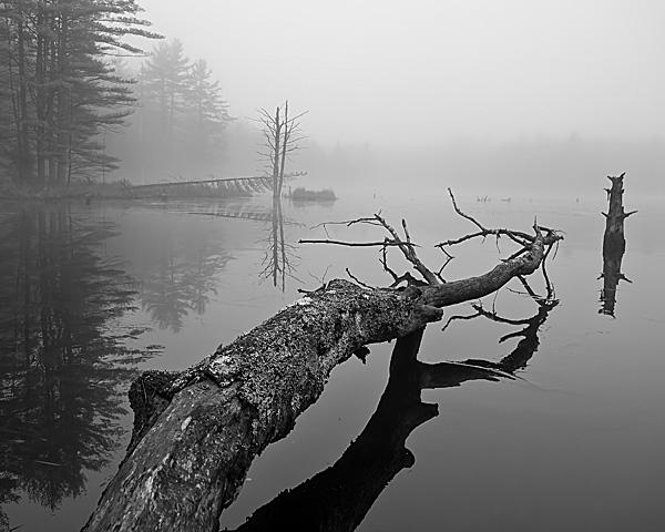 Beaver Pond, Hancock, NH