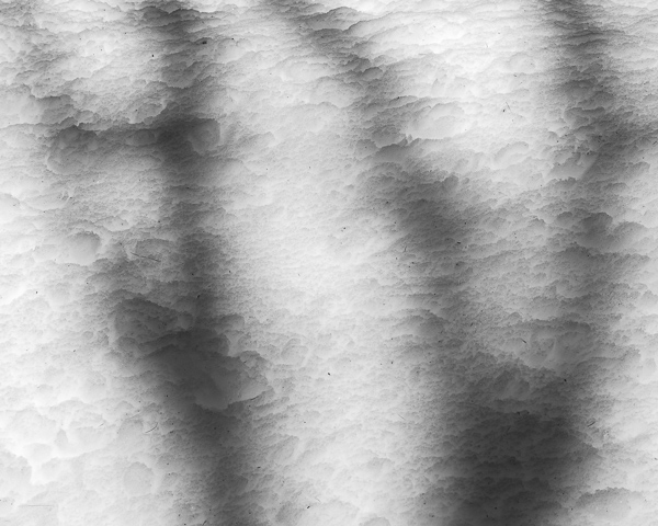 Shadows #1