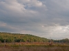 Local Wetland (two frame pano)