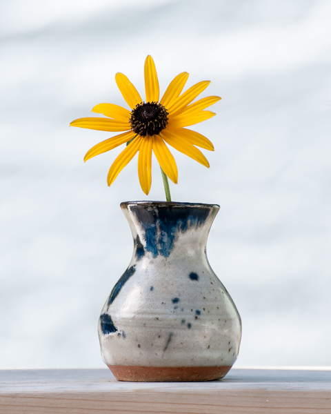 Garden Flower #1
