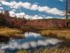 Wetland, Fitzwilliam NH