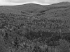 Maine Timber Land near Rangeley Lake