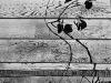 Barn Wall Detail #3