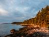 Early Morning Shoreline at Hog Island, ME