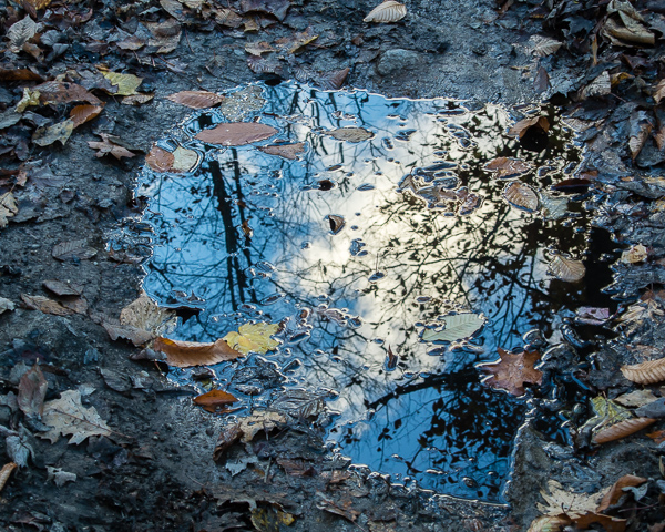 Puddle of Sky #8