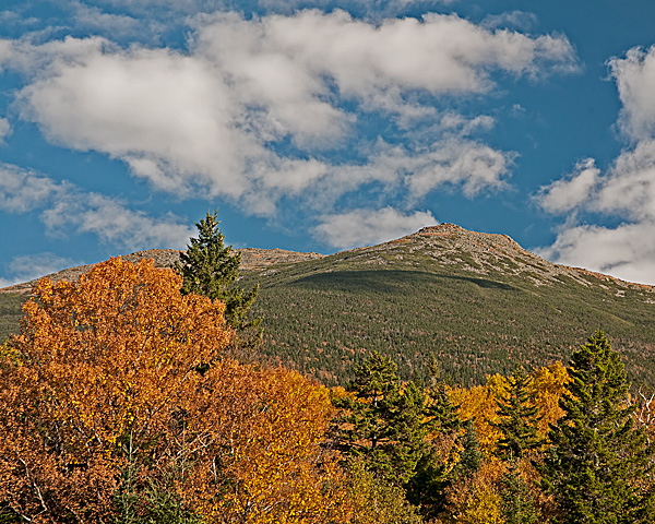 Mount Jefferson from Jefferson Notch